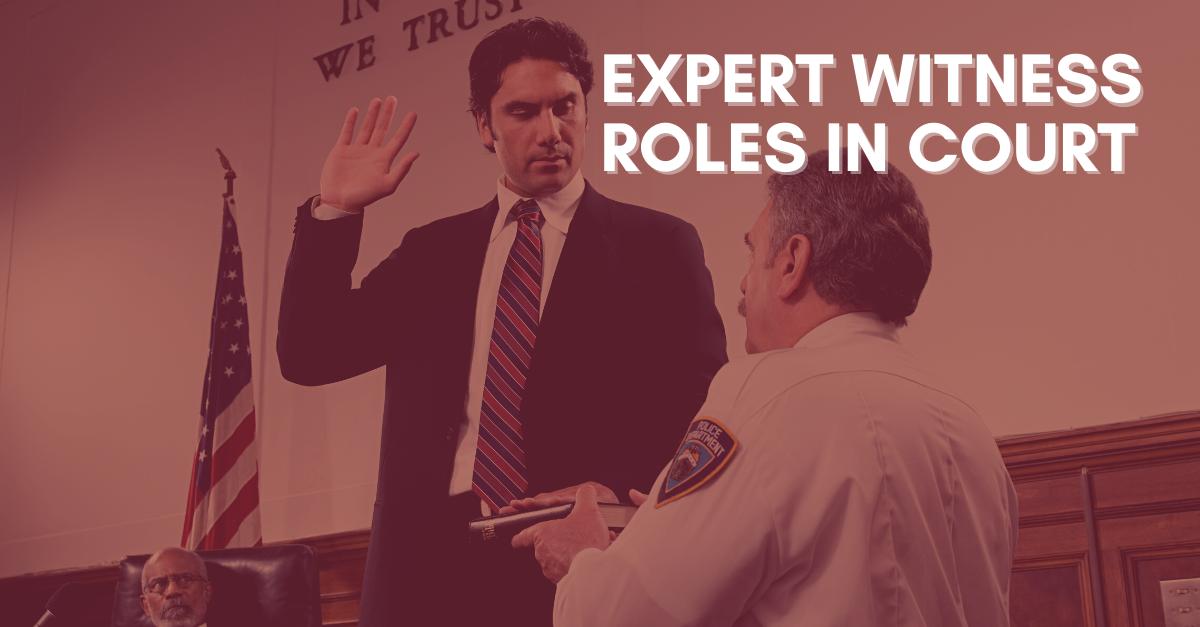 Expert Witness Roles in Court