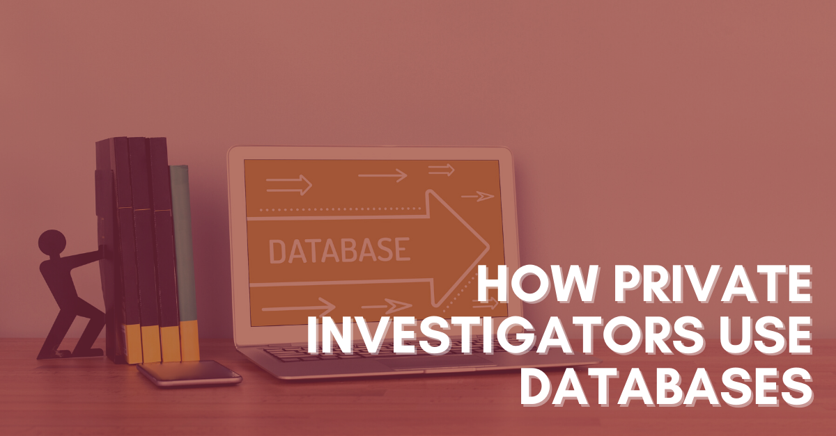 How-Private-Investigators-Use-Databases
